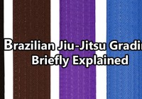 Brazilian Jiu-Jitsu Grading Briefly Explained